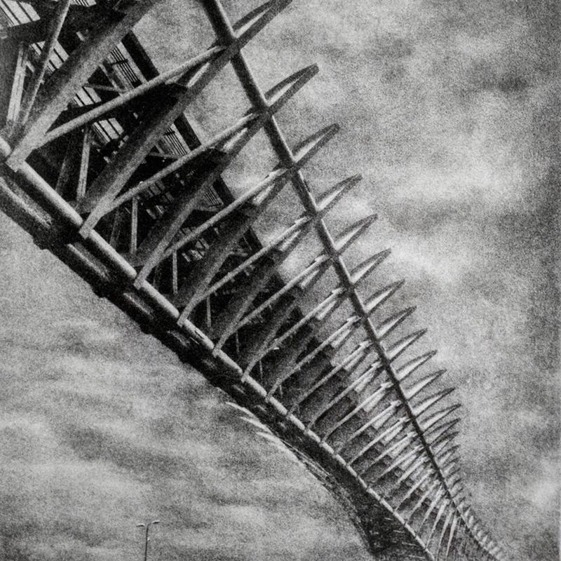People Mover Bridge - Venezia - bromolio - camera oscura - fotografia analogica